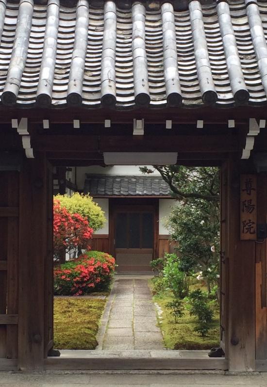 桜沢如一のお墓