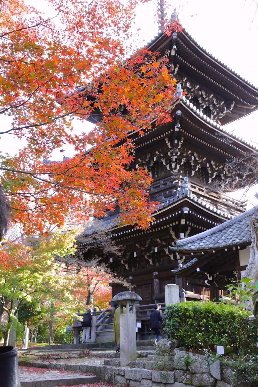 京都 真如堂の紅葉3