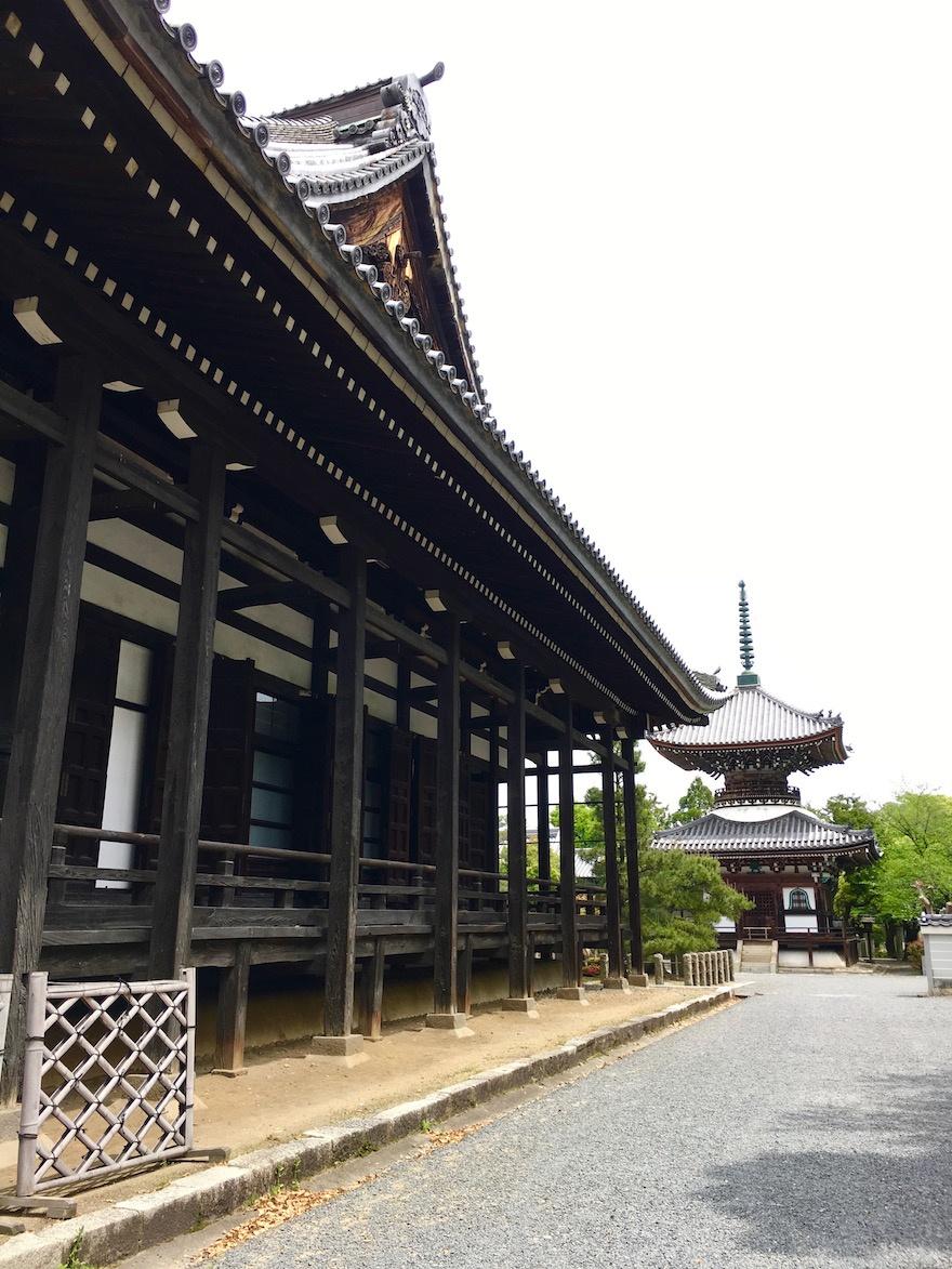 京都 本法寺 経蔵院2