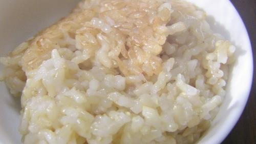 玄米投稿0408 (500x281)