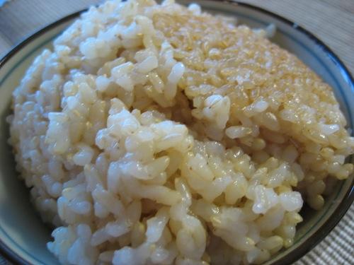 玄米10130529