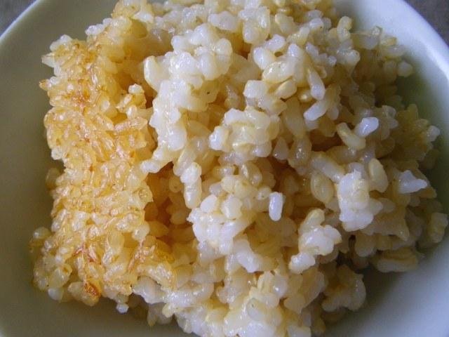 玄米御飯34回目