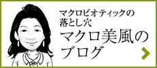 マクロ美風ブログ